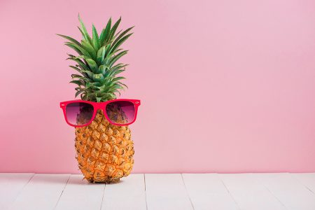 Pineapple Bitcoin Fund Donations