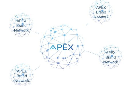 Review of the APEX ICO