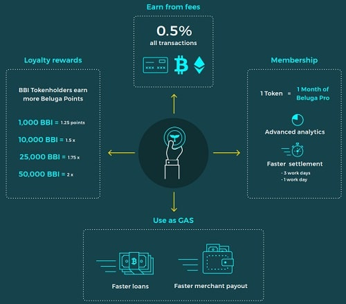 Beluga Pay Structure