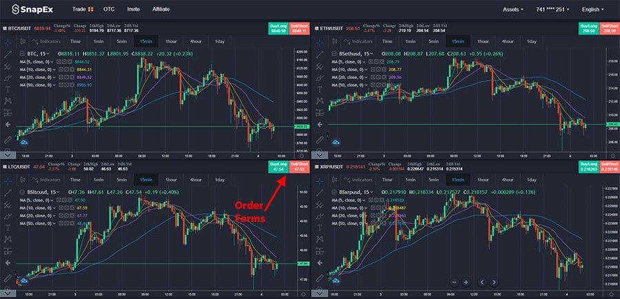 SnapEx Multiple Charts